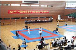 Taekwondo Area, Wesing