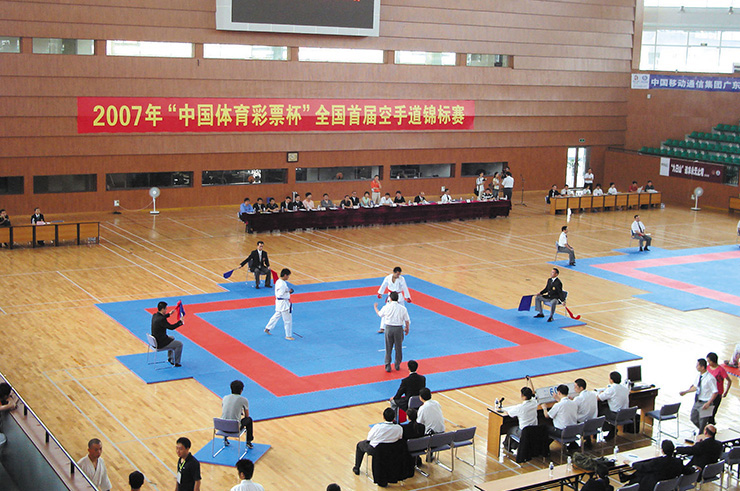 Superficie de Taekwondo, Wesing