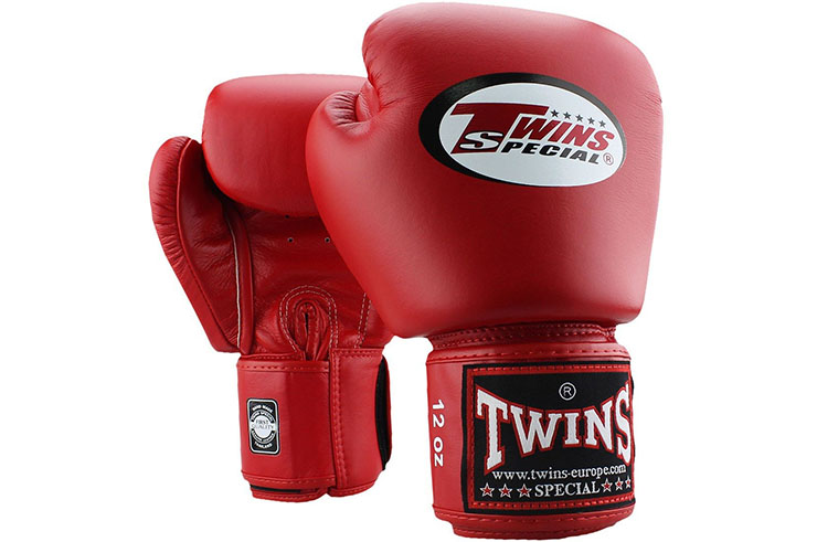 Boxing Gloves - BGVL3, Twins