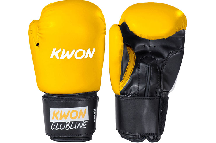 Boxing gloves, Initiation - Pointer, Kwon