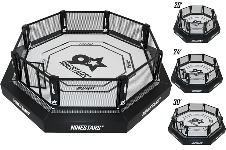 MMA Cage Championship - UFC standards