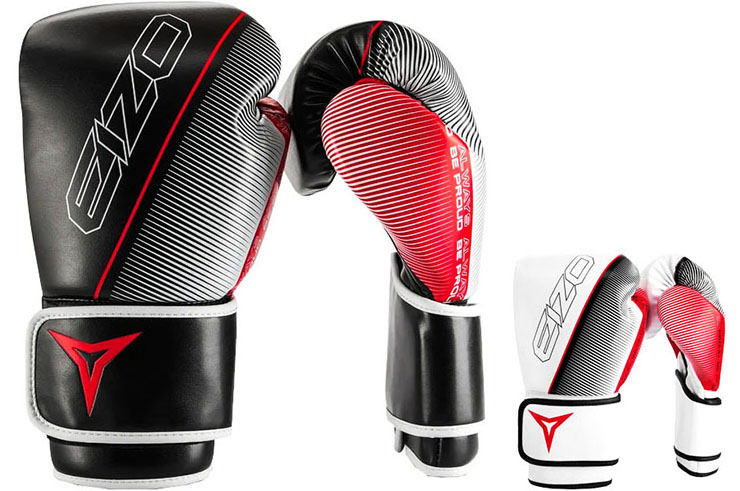 Training Gloves - GAMMA, Eizo Boxing