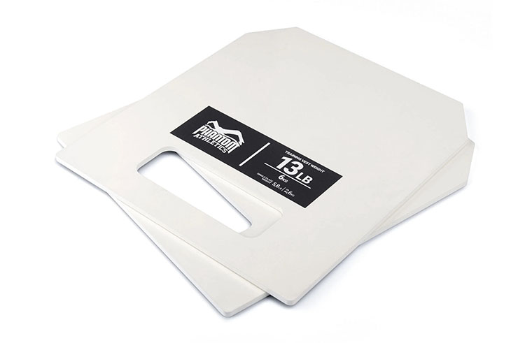 Metal Weights for Weighted Vest, Phantom Athletics