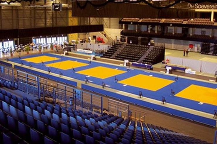 Judo Mat / tatamis vinyl - DragonSports eu