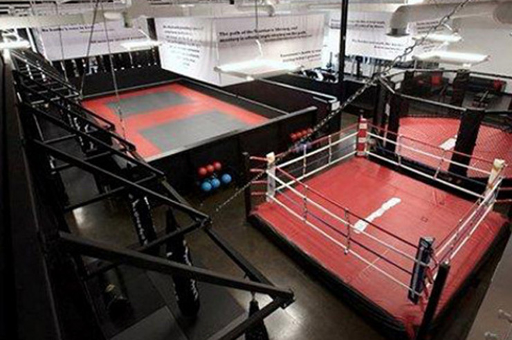 Tatamis de MMA