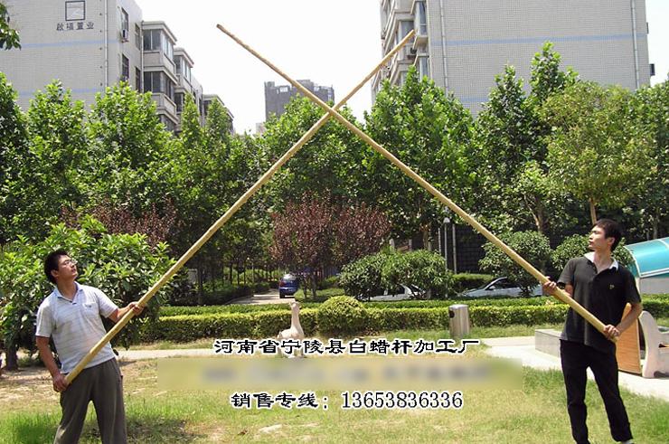 Pértiga Wingchun (Pértiga Dragón) 2