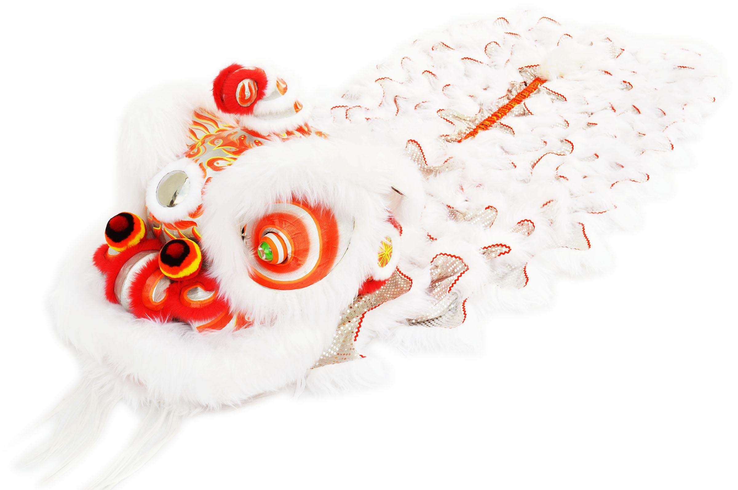Costume Danse du Lion du Sud «Bai Ying» (Haut de Gamme)