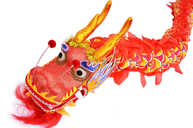 Dragon Costume, Red & Gold, 7 persons