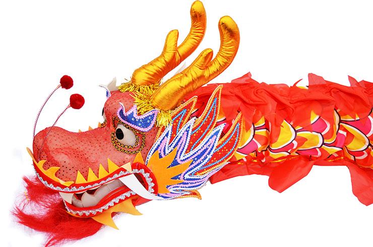 Traje de Dragón, Rojo y Dorado, 9 personas