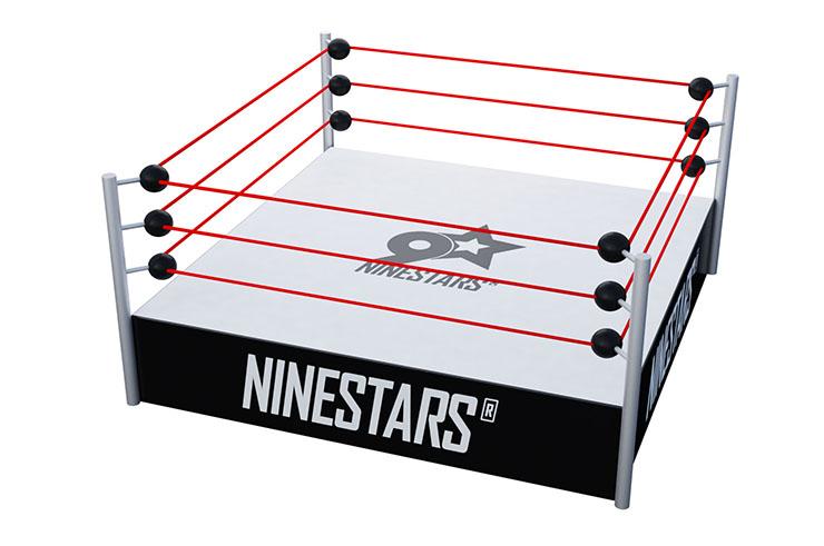 Ring de Catch WWE