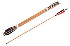 Flèches pour le tir à l'arc - Lot de 8
