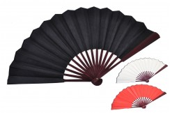 Traditional Fan