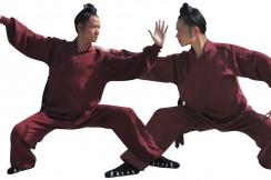 [Destock] Traje Wudang Daofu - 170cm