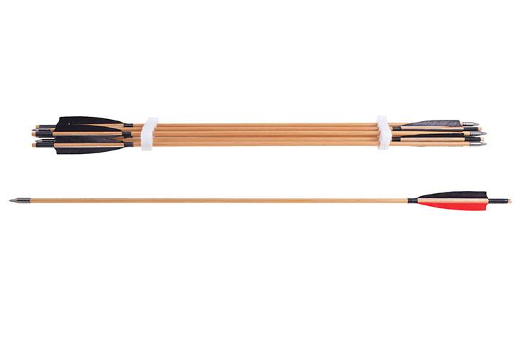 Archery arrows (set of 8)